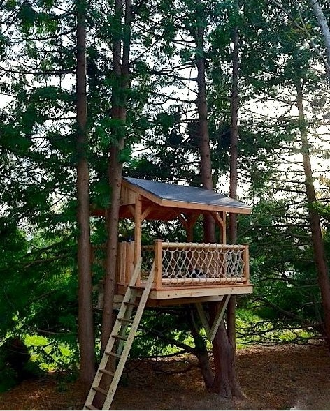 Tree house designs Livable Super Treehouse Treehouse Concept Treehouse Guides Design Examples By Stiles Designs