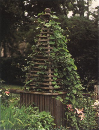 Garden Project Designs And Plans - You Can Build.