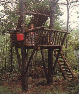 Pine Log Tree Fort
